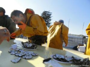 Fête Les Gobeurs d'Huîtres Bouin 3