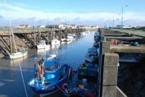 Port des Brochets Bouin